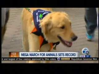 Mega March for Animals 2012