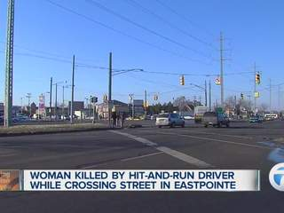 Police investigate hit and run accident