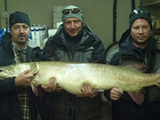 fishrecord_20130220150609_JPG