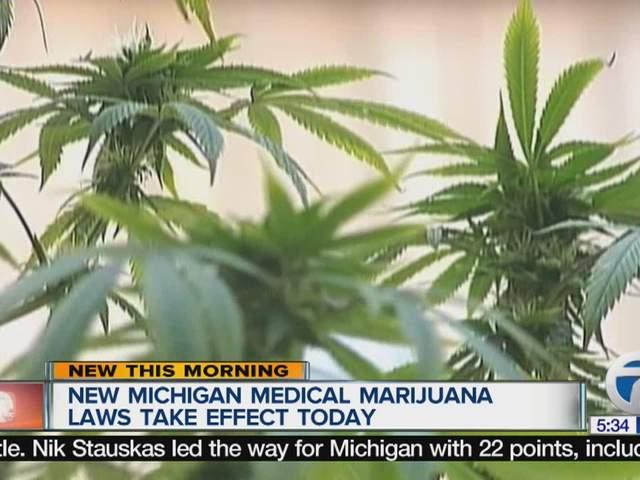 Michigan Medical Marijuana Laws