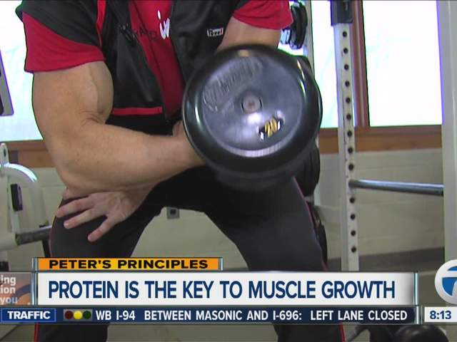 Peter's Principles - Protein for muscles