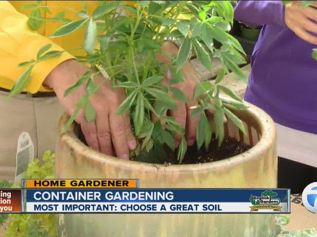 Home Gardener, container gardening, choosing the right soil