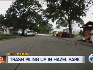 Hazel Park jumps into action to pick up trash