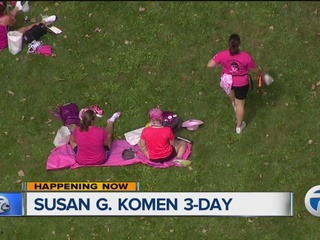 Michigan breast cancer 3 day