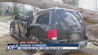 Man killed, fiancee hurt when tree falls on SUV
