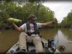 VIDEO: Fisherman finds massive alligator on line