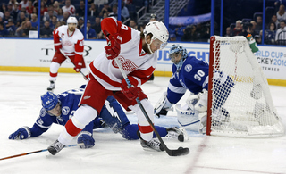 Red Wings consistent in making playoffs