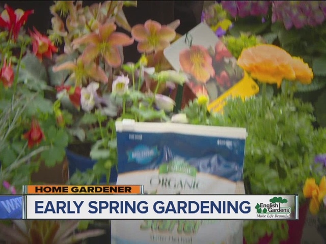 Home Gardener: Early Spring Gardening