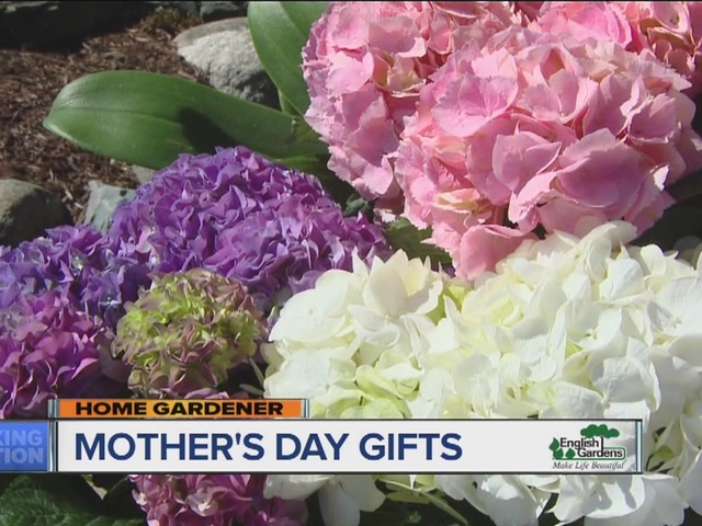 English Garden's Home Gardener: Mother's Day Gifts