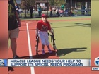 Miracle League of MI needs help upgrading field