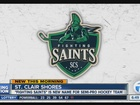 Name revealed for semi-pro hockey team in S.C.S.