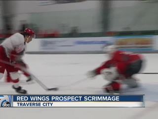 Bertuzzi, Sadowy shine in Red Wings scrimmage