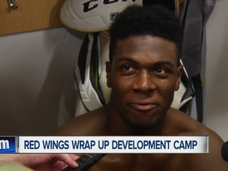 Red Wings top 2016 draft picks eager after camp