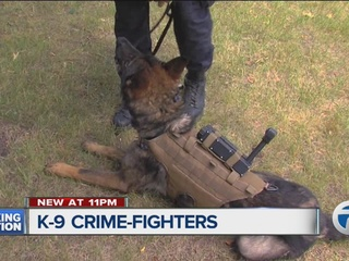 Crime-fighting K9s are helping state police