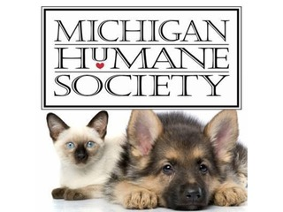 MHS giving old shelter to Detroit Animal Care