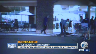 VIDEO: Young man goes on bizarre rampage