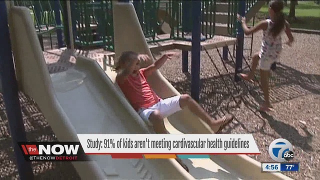 Children score low on cardiovascular health measures