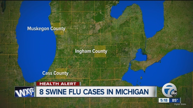 8 people ill after exposure to sick pigs at Michigan fairs