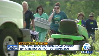 120 cats rescued fom veterinarian's home