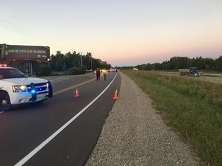 Teen killed in hit-and-run in Green Oak Twp.