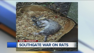 Southgate looks to win its war on rats