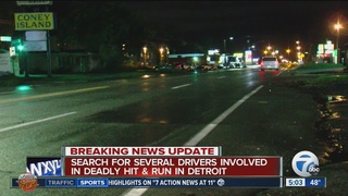 Search on for drivers in deadly hit-and-run