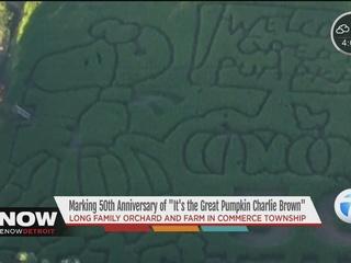 Corn maze honors 'Great Pumpkin' cartoon