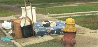 Dog left behind, waits for owners to return