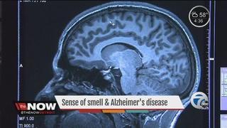 Sense of smell may predict Alzheimer's risk
