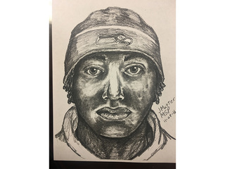 Teen escaped kidnapping, sexual assault attempt