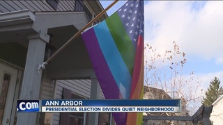Modified flag starts flap in Ann Arbor community