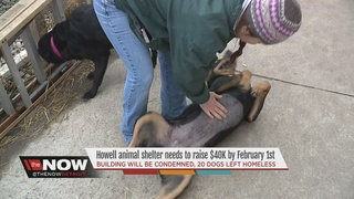 Howell animal rescue needs help themselves