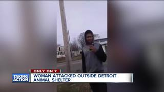 Woman sucker-punched outside animal shelter