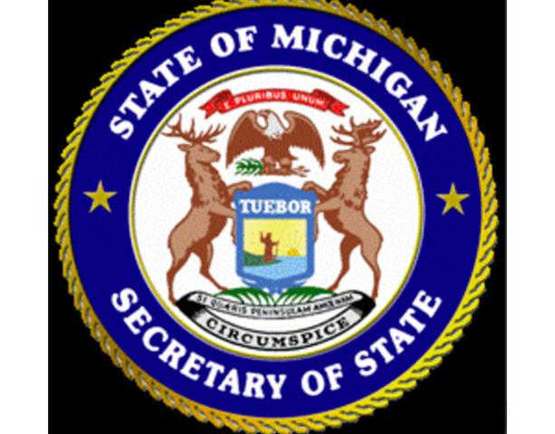 Michigan Secretary of State transactions off-line