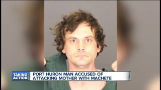 Port Huron man charged in deadly assault on mom