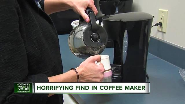 Mold Free Coffee Maker : Mom horrified by mold in her coffee maker - WXYZ.com