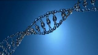 At-home DNA test for risk of diseases approved