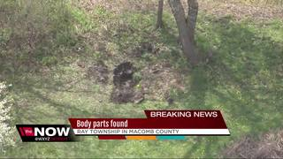 Body parts found in Ray Township, sources say