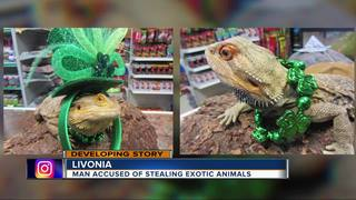 Man accused of stealing exotic animals from shop