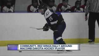 Community, Red Wings rally around hockey player