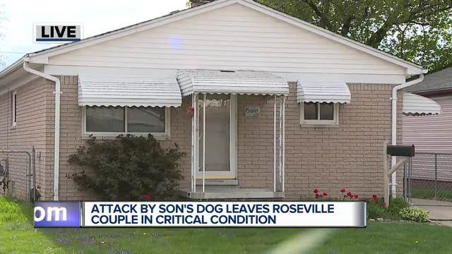 Roseville couple suffers 'horrific injuries' after dog mauling