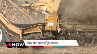 Ask Dr. Nandi: Are potatoes healthy?