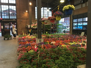 Photo gallery: 2017 Flower Day at Eastern Market
