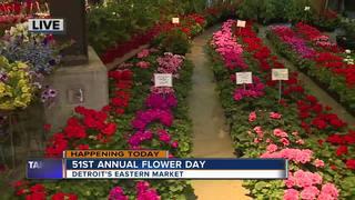 Eastern Market Flower Day
