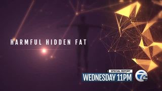 Wednesday at 11: Harmful hidden body fat