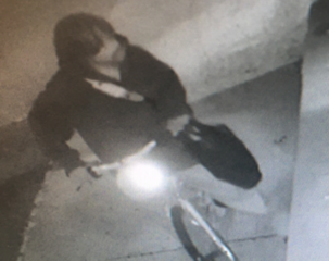 Deputies search for Mt. Clemens flower bandit