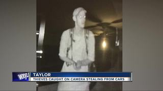 Theft suspect caught on tape going through cars