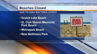 Many metro Detroit beaches closed over bacteria