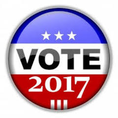 Voting in summertime isn't fun... but important!