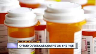 Opioid overdose deaths on the rise